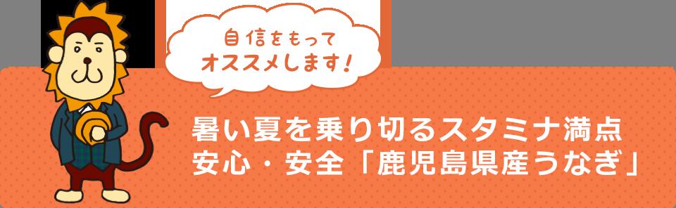 自信をもってオススメします!暑い夏を乗り切るスタミナ満点 安心・安全「鹿児島県産うなぎ」