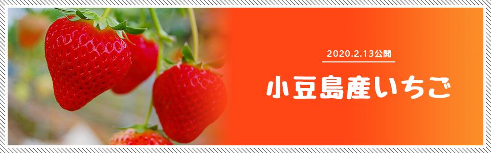 2020.2.13公開 小豆島産いちご